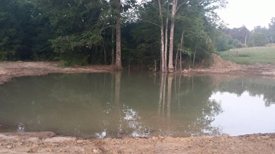We Have A Pond